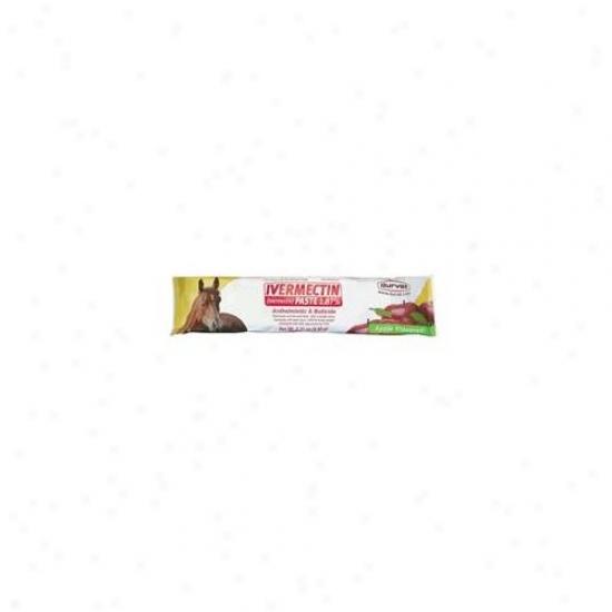 Durvet-equine Ivermectin Paste 1. 87 Percent 6. 08 Gram - 001-1033