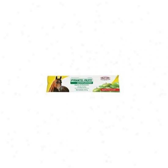 Durvet-equine Pyrantel Paste Wormer 23. 6 Gram - 001-07977