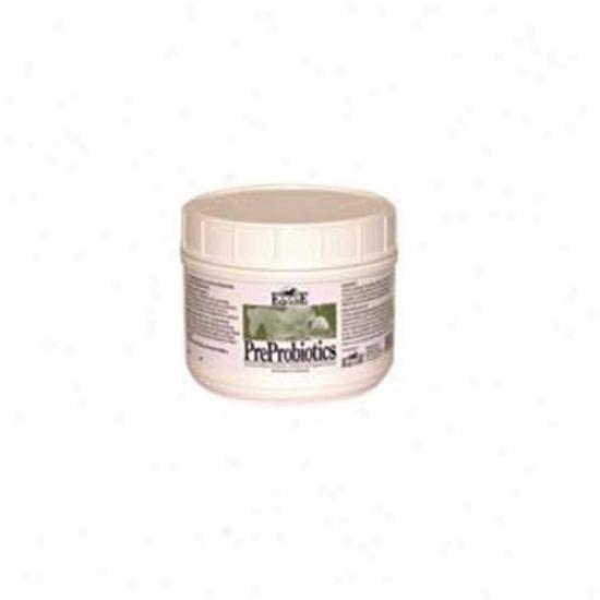 Equilite Preprobiotics 1 Pound - 2ppbs0001e