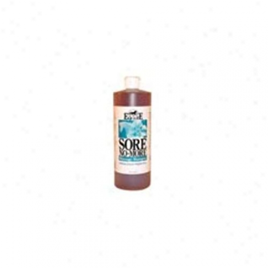 Equilite Sore No More Shampoo 32 Ounces - 1snmsh032e