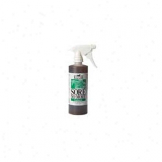 Equilite Sore No More With Sprayer 16 Ounces - 1snbmlts16s