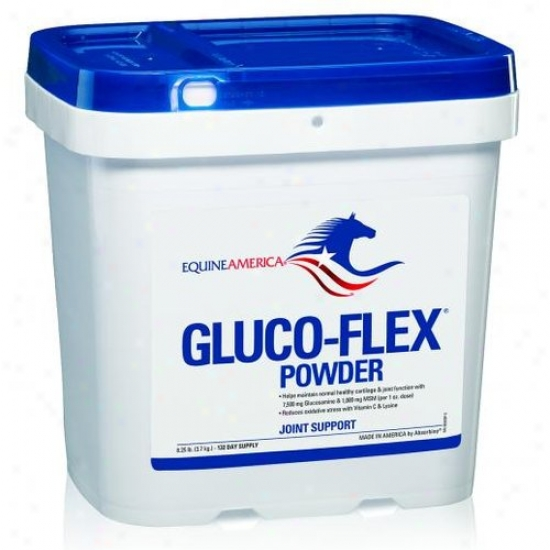 Equine Americ a44778b Gluco-flex Powder