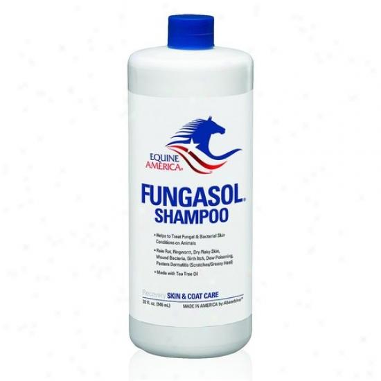 Equine America 444964a Fungasol Shampoo