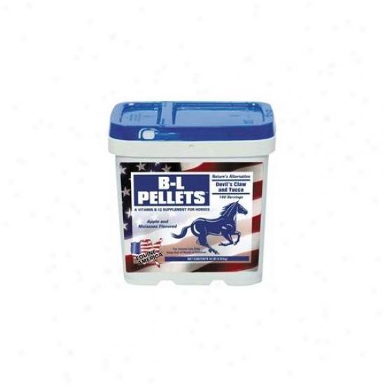 Equine America - B-l Pellets 10 Pound - 444980c