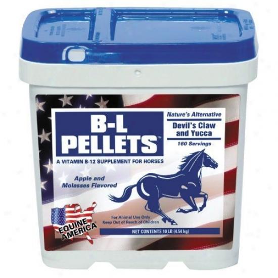 Equine America B-l Pellets
