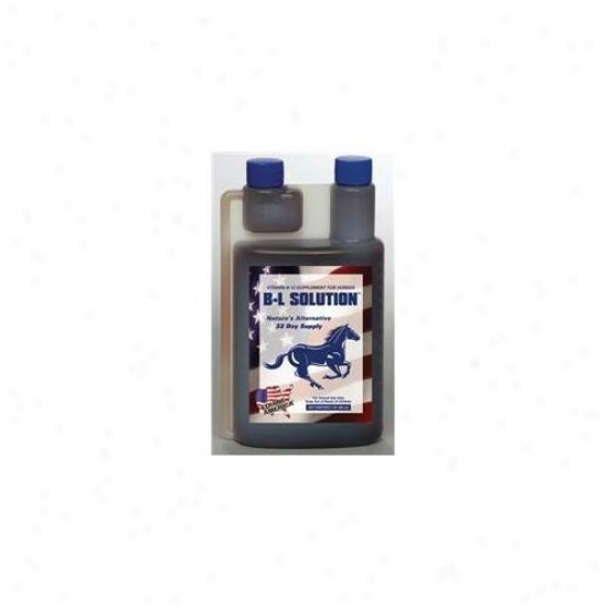 Equine America - B-l Solution Quart - 444987a