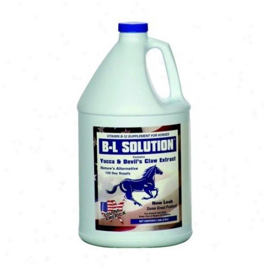 Equine America B-l Solution