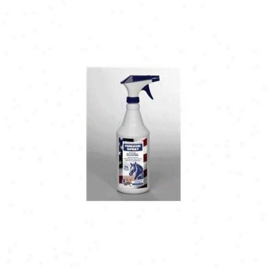 Equine America - Fungasol Spray Quart - 444961a