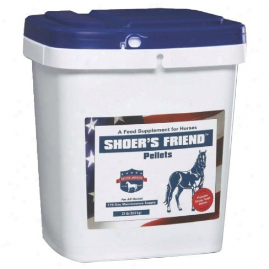 Equine America Shoers Friend
