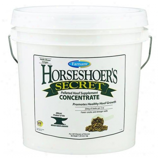 Farnam 3005946 Horseshoer S Secret
