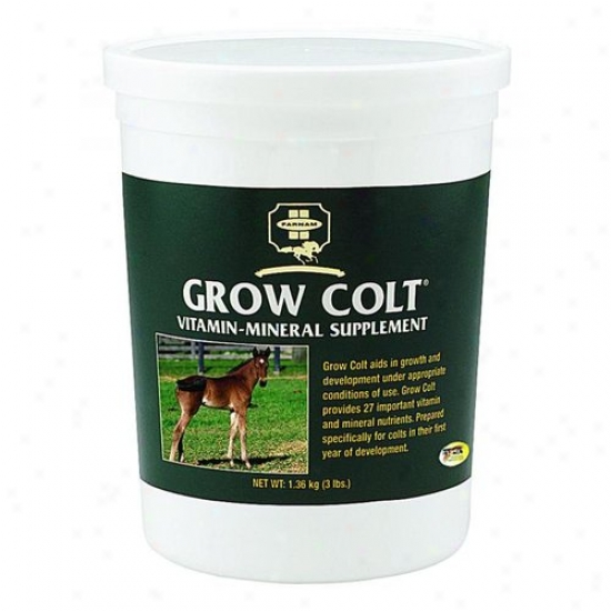 Farnam 31004 Grow Colt Vit And Min Supplmnt