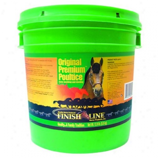 Finish Line 06013/06007 Original Premium Clay Poultice
