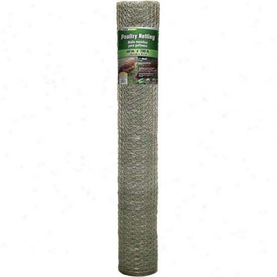 G&b Mat 308434b 60 In X 150' 1 In Mesh Galvanized Poultry Netting