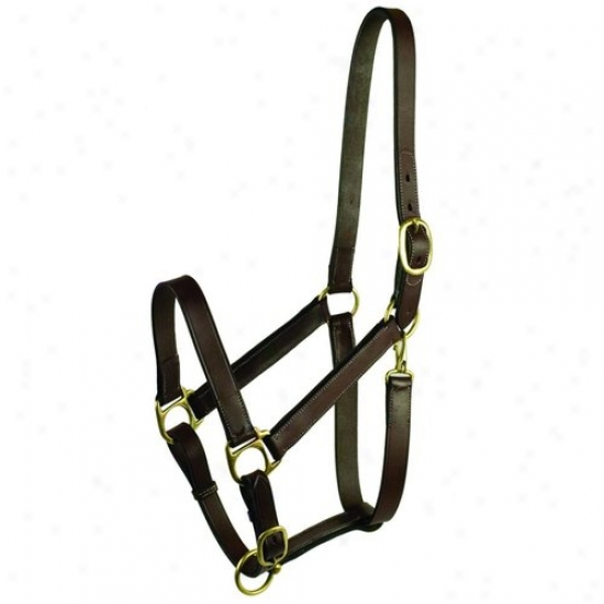 Gatsby Leather 203s/1 Fixed Halter With Snap