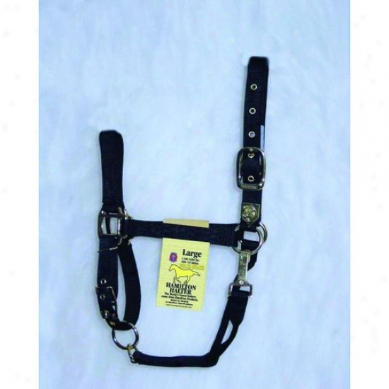 Hamilton Halter 1das Lgbk Adjustable Chin Halter With Snap