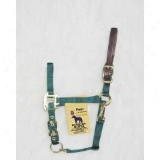 Hamilton Halter 3dlas Podg Adjustable Halter With Leather Headpole
