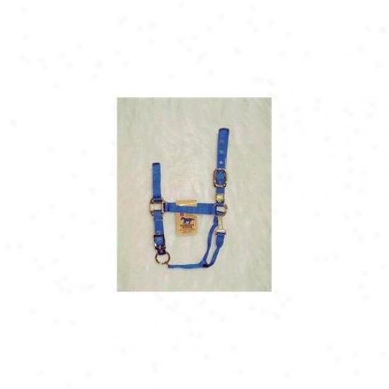Hamilton Halter Company - Adjustable Chin Halter Attending Snap- Blue Averwge - 1das Avbl