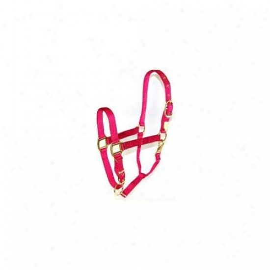 Hamilton Halter Company - Adjustable Chin Halter With Snap- Raspberry Average - 1das Avrs