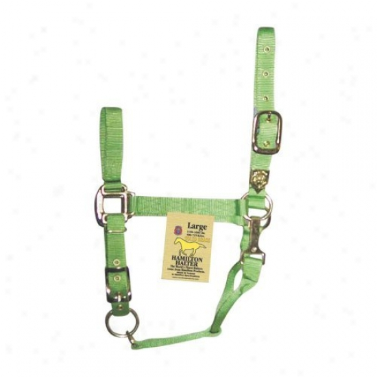 Hamilton Halter Company Adjustable Chin Halter With Snap