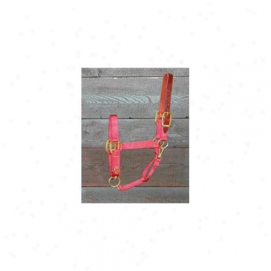 Hamilton Halter Company - Adjustable Halter With Leather Headpole- Red Average - 1dalss Avrd