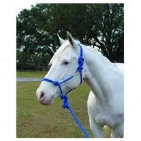 Hamilton Halter Rhl Avbl Adult Horse Rope Halter With Lead, Blue