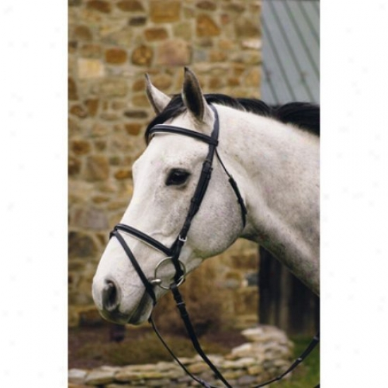 Henri De Rivel Padded Drezsage Bridle With Flash And Web Reins