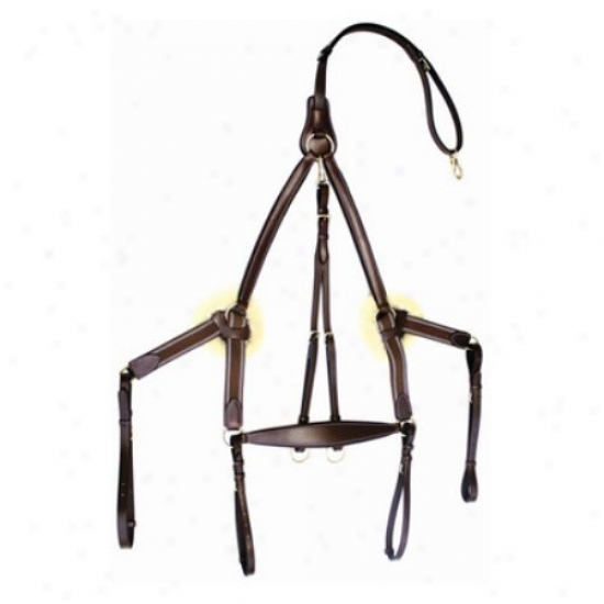 Henri De Rivel Pro 5 Point Elawtic Breastplate Martingale With Running Attachment