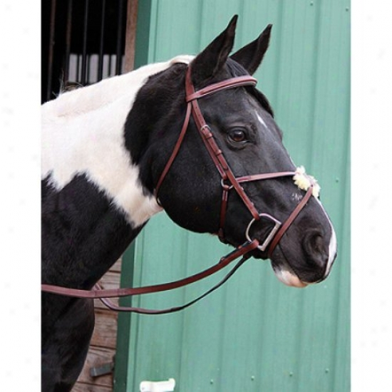 Henri De Rivel Pro Figrue 8 Bridle With Rubber Reins