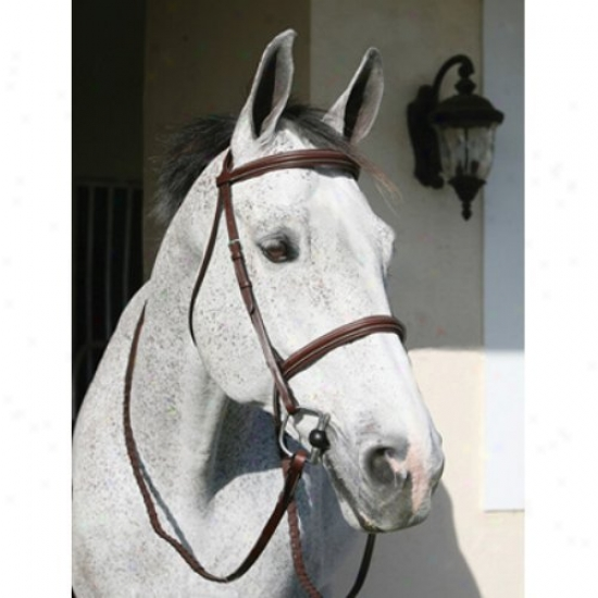 Henri De Rivel Pro Plain Raised Padded Bridle With Head Piece And Matching Reins