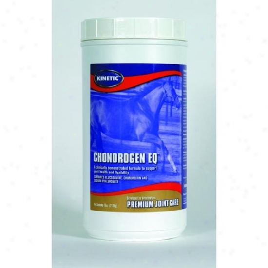 Kinetic 1002-02-01/2000-032 Chondrogen Eq Powder