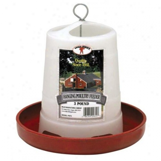 Little Giant Phf3 3 Lbs Plastic Hanging Poultry Feeder