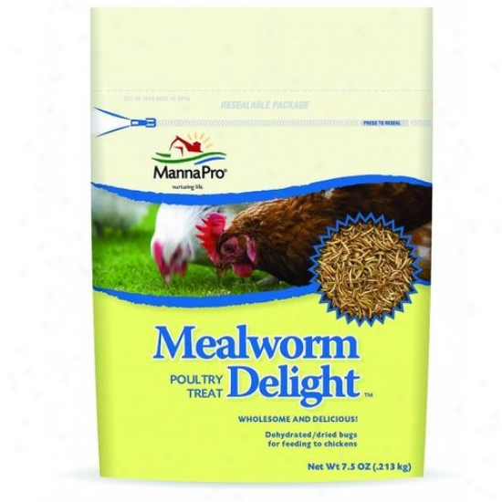 Manna Pro 00-1031-0214 Mealworm Delight Poultry Treat