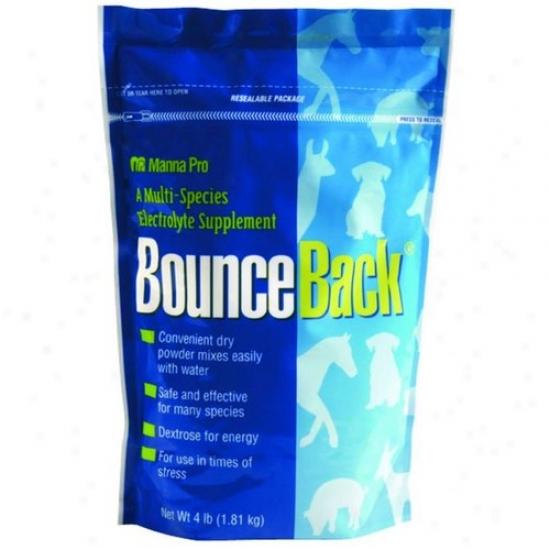 Manna Pro 9413 Bounce Back Electrolyte Calves