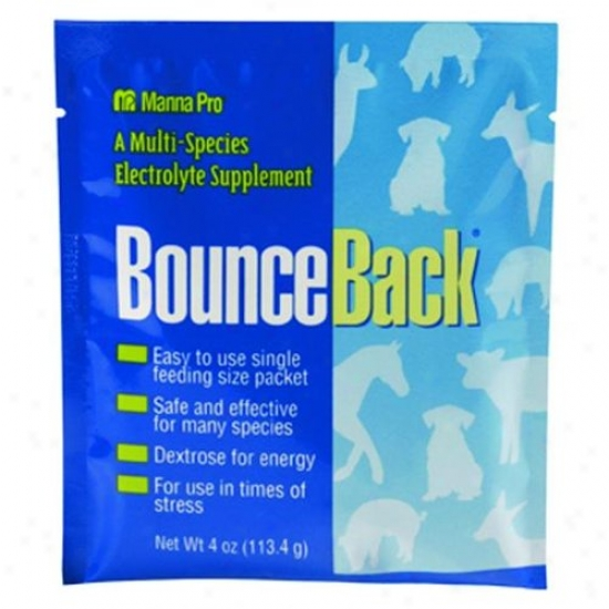 Manna Pro 94130249/94130223 Bounce In a ~ward direction Electrolyte Calves