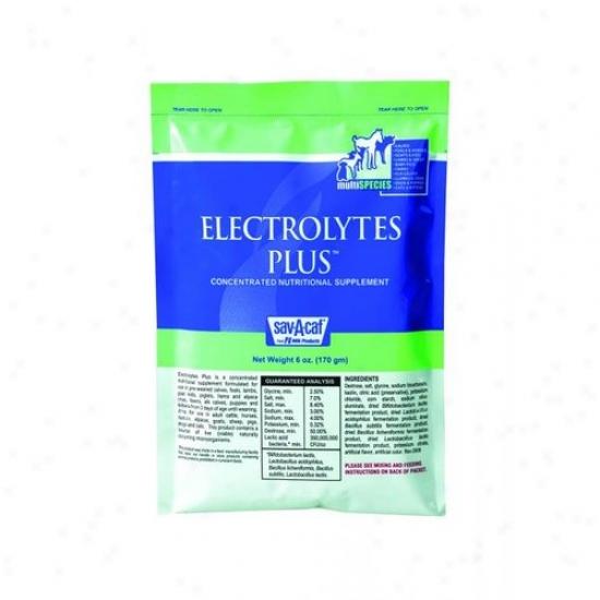 Milk Products 01-7408-0264 Sav-a-caf Electrolyte Plus