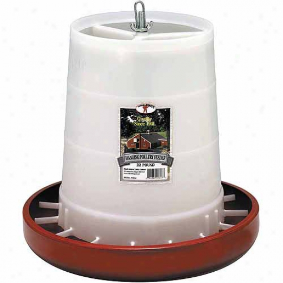 Miller Manufacturing 22-lb Red Plastic Hanging Feeder