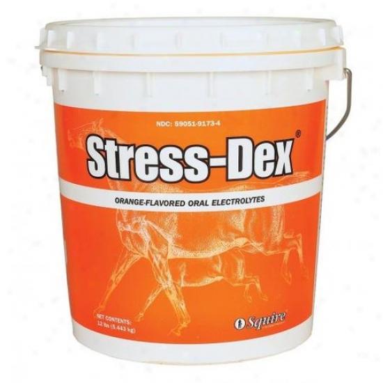 Neogen Squire 79176 Stress-dex Electrolyte Powder