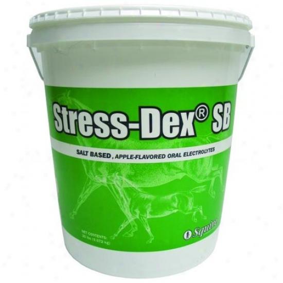 Neogen Squire 79186 Stress Dex Sb Electrolyte