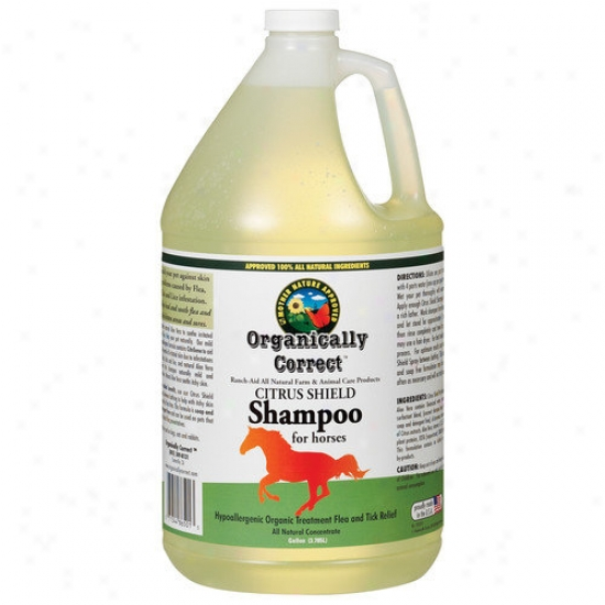 Organically Correct Citrus Forbid Shampoo For Horses