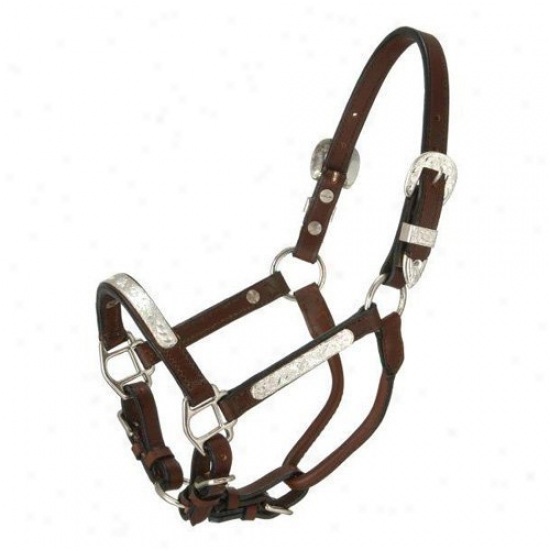 Royal King Dark Oil Silver Bar Show Halter