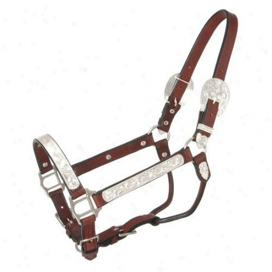 Silver Royal Horse Halter FullS ilver Bright Cut Edge