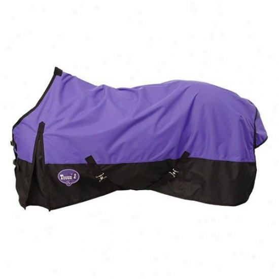 Tough-1 600 Denier Waterproof Horse Sheet