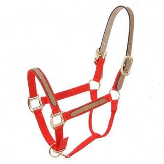 Touvh-1 Break-awy Halters - Pack Of 6