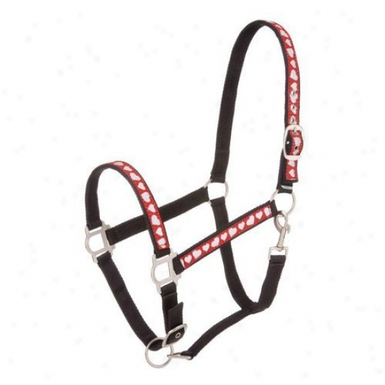 Tough-1 Nylon Halter With Glittery Ribbon Accents And Satin Hardware