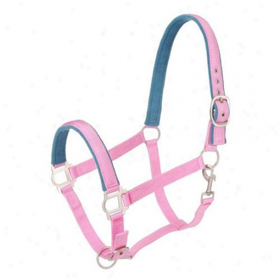 Tough-1 Nylon Padded Halter In the opinion of Satin Hardware