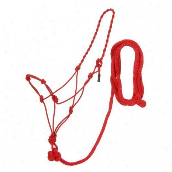 Tough-1 Poly Rope Halters With Knots And Lead - Pack Of 6