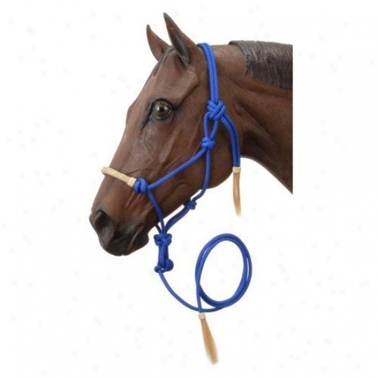 Tough-1 Rawhide Noseband Rope Halters With Lead - Collection Of 6