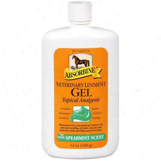 W. F.  Young Absorbine Veterinary Liniment - 430504p/430504