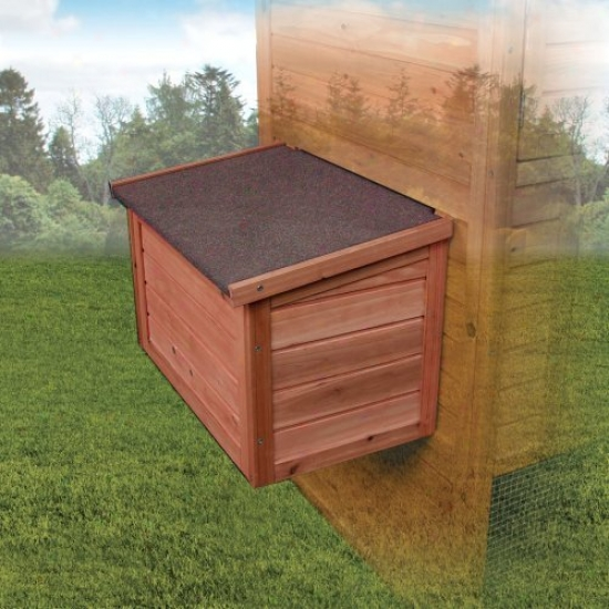 Ware Premium Chick-n-nest Box