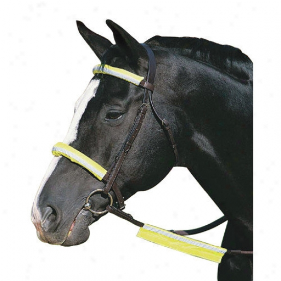Weatherbeeta Usa Pet Roma Reflect Bridle Kit